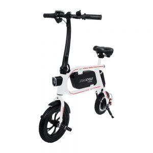 Folding electric bike in 2020